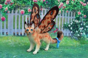 cat-butterfly by FilippovaAlison