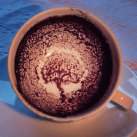 The art to read in coffee by Floriandra
