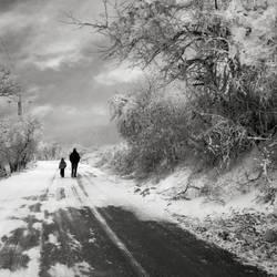 Frozen road by Floriandra