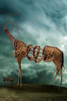 Safari... by endrju100