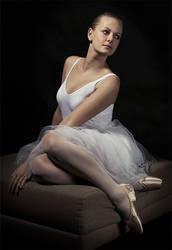 swan by Nhung