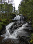Stream XVII by Wylderness