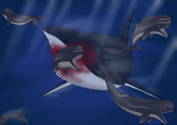 Megalodon: Time to Hunt by nature1029