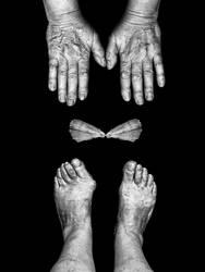 asymetry by gacher