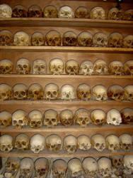 Lots of skulls by skull-club