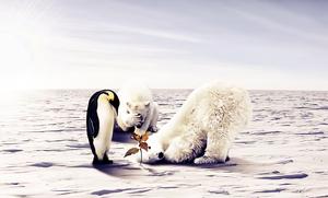 Global Warming II by KarimFakhoury
