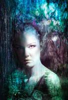 Forest dreamer by Desertroseimages