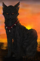 Darkstripe after joining Bloodclan by Kokolana