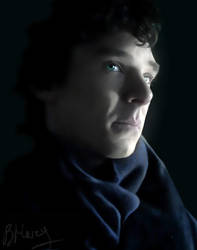 Consulting Detective by BMary13