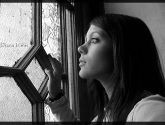 Windowpane by diana-irimie