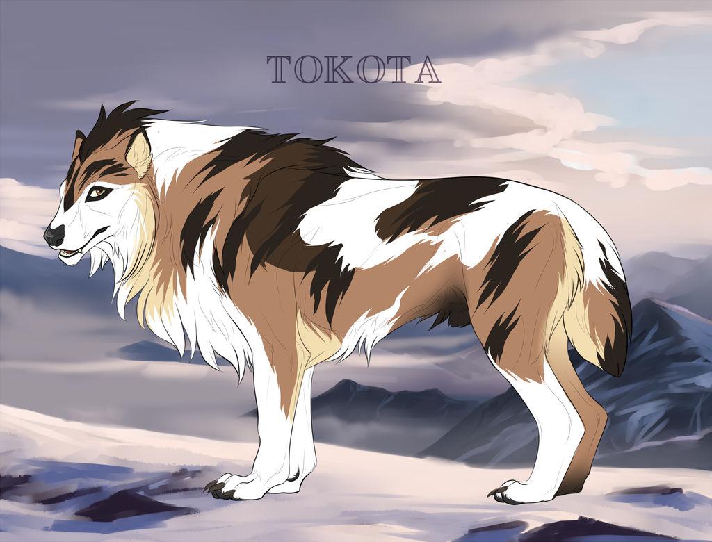 Dakota 434 by TotemSpirit
