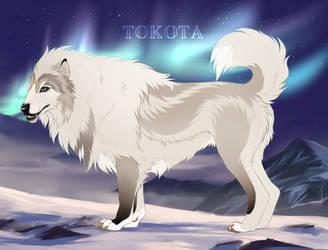 Nenana 9545 by TotemSpirit