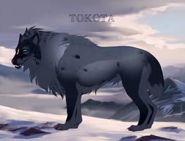 Shariko 17611 by TotemSpirit