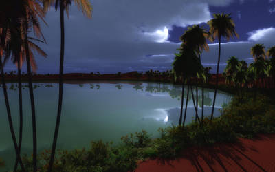 Midnight at the Oasis_wide by relhom