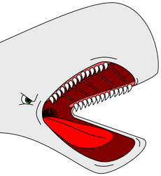 Stereotyped cartoon whale head by arek-91