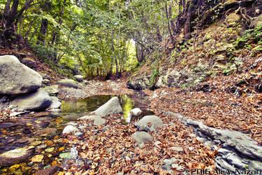 River by enxo7