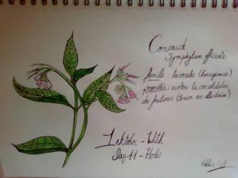 Inktober - Day 11 - Herbs by SarahDealerEvans