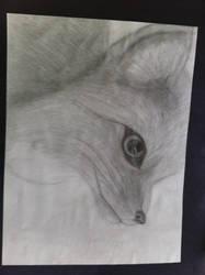 Snow Fox by DarkBloods