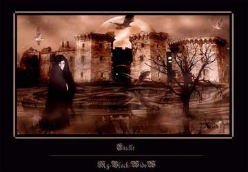 .::: Castle :::. by My-Black-WidoW