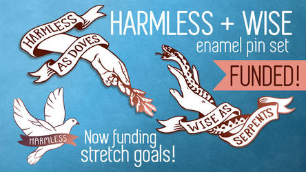 Harmless + Wise Kickstarter by CrystalCurtisArt