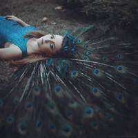 Peacock by anyaanti