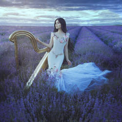Lavender nocturne by anyaanti