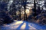 Cold Winter Walk FULL by Clu-art