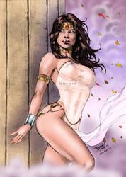 DC's Wonder Woman 2 by Clu-art