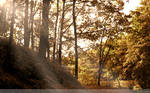 Edge of Autumn Wallpaper by Clu-art