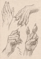 Anthropomorphic Wolf Hand Study by RussellTuller