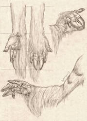 -Commission- Dragon/Unicorn Arm Study by RussellTuller
