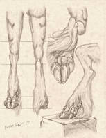 -Commission- Dragon/Unicorn Leg Study by RussellTuller
