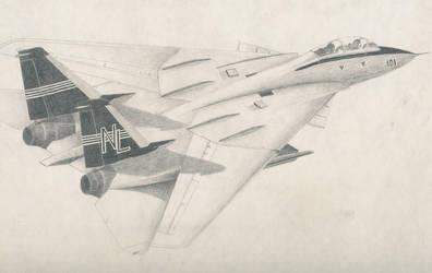 F-14 Tomcat by artifex29