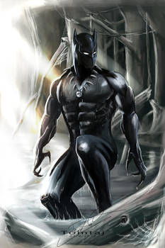Black Panther by Tomtaj1