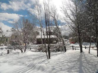 March Snow by Barn0wl