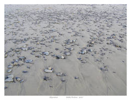 Migration by EddiePerkins