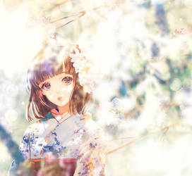 meet spring by asml30