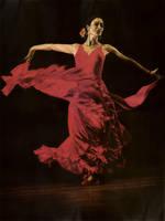 Flamenco by Piombo