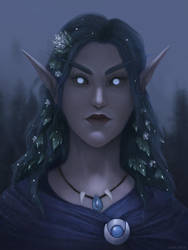 Night Elf by Freezzelaj