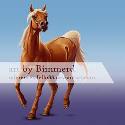 Arabian Horse by Bimmerd