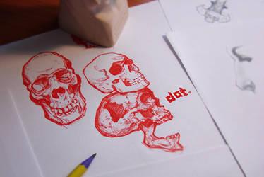 Skulls study 0002 by Icecoldart
