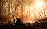 Autumn Star by TitusBoy25