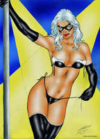 Black Cat by Carlos Silva by winchester01