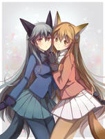 Foxes-Kemono Friends by shadowsinking