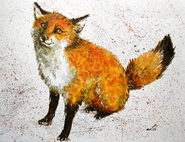 Seated fox by LauraMSS