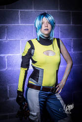 Borderlands 2 by MiddayIce