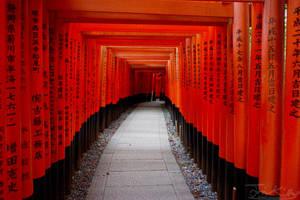 Walkway of Fushimi Inari Shrine by JKase911