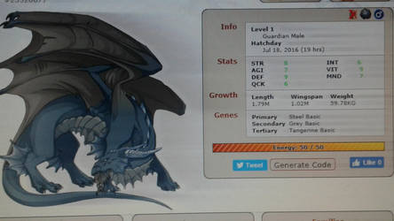 My first dragon.:Flight Rising:. by CmndrWolfnumbuh60