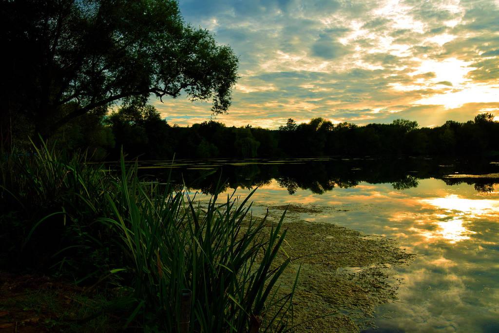 Good night nature 3 by davidmnr on deviantart - Good night nature pic ...