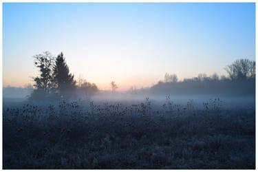 Un matin by DavidMnr